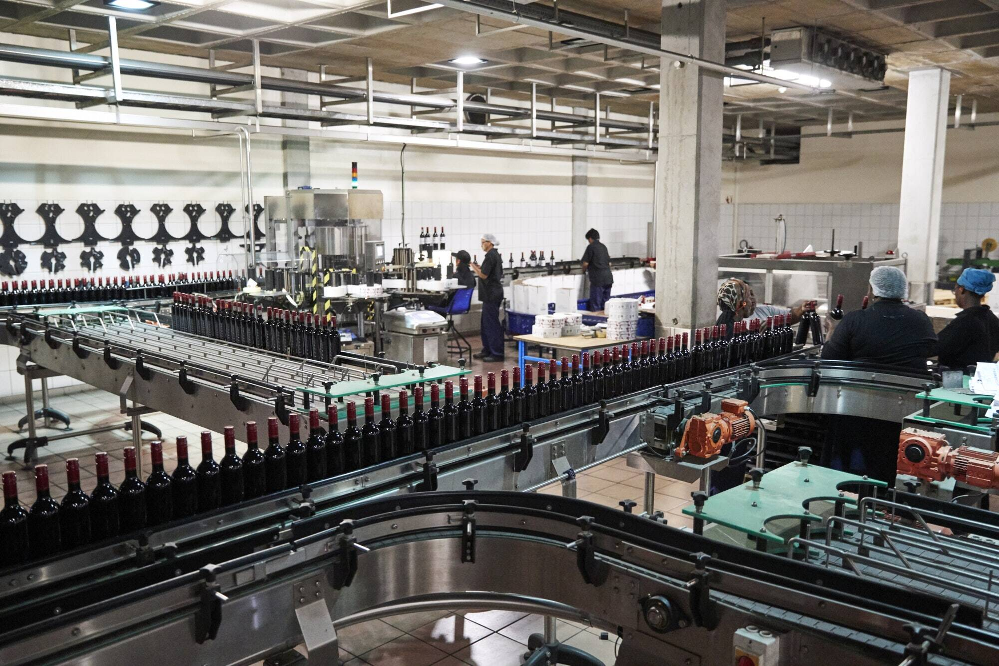 colleagues-working-in-the-bottling-plant-at-a-wine-factory.jpg